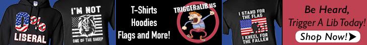 TRIGGERaLIB